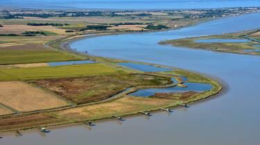 Das Mündungsgebiet der Charente - ©FDHPA17