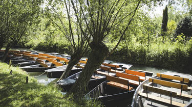 Barques dans les canaux du Marais Poitevin